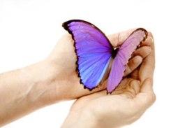 butterfly-totem-temp-300